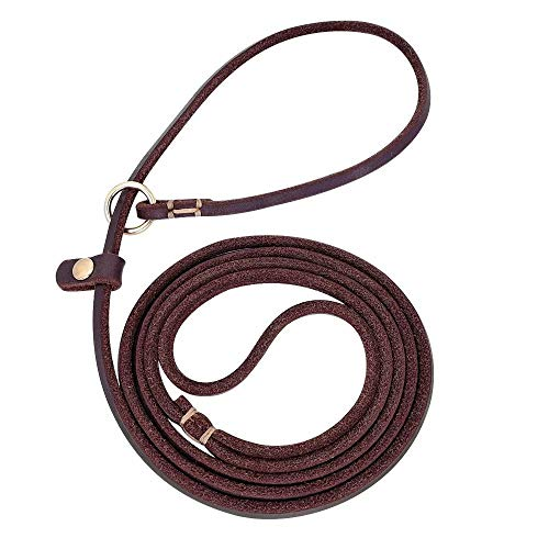 Beirui Slip Brown 4FT Leather Dog Leashes - No Pull Adjustable Collars with Training Leashes Professional Leads for Small Dogs Walking Chihuahua,Yorkshire,Teddy ()