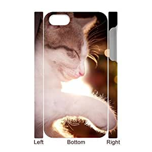 3D Bumper Plastic Case Of Lovely Cat customized case For iPhone 5 5s
