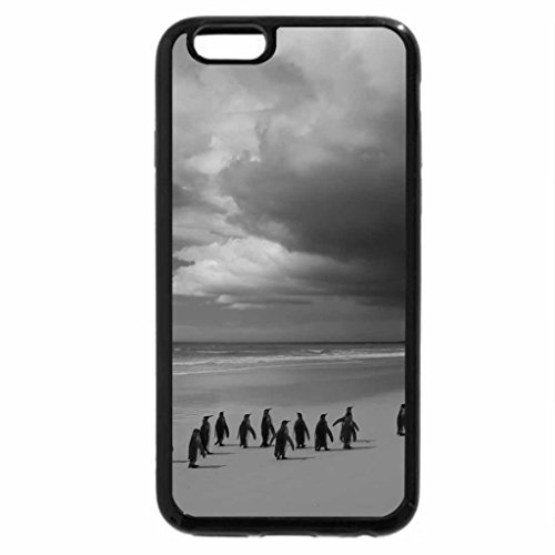 iPhone 6S Plus Case, iPhone 6 Plus Case (Black & White) - penguins on a lonesome beach