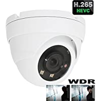 HDView H.265 4MP Megapixel HD IP Network Camera WDR Wide Dynamic Range PoE 3.6mm Lens IR Infrared Dome ONVIF