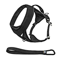 Kurgo Go-Tech (TM) Everyday Reflective Dog Harness for Running, Hiking & Walking Harness, Black, Large