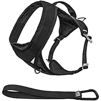 Kurgo Go-Tech (TM) Everyday Reflective Dog Harness for Running, Hiking & Walking Harness, Black, Medium