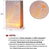 Flameless Tealights & Butterfly Shape Luminary Bag