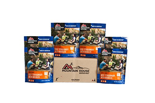 Mountain House Beef Stroganoff with Noodles Premium Case Pack (Milk Freeze Packs compare prices)