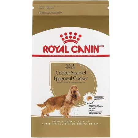 (Royal Canin Feline Health Nutrition Indoor Adult Dry Cat Food, 15-Pound)