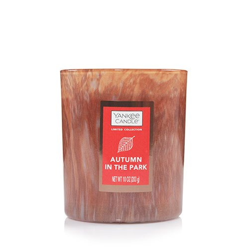 Yankee Candle Autumn In The Park Special Edition Tumbler Candles, Fresh Scent