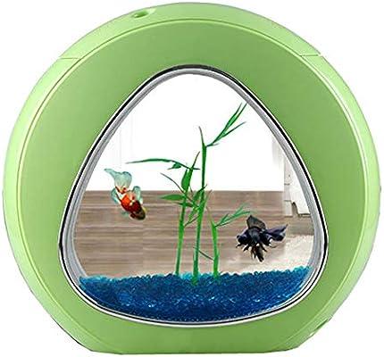 JIANGU Acuario – Mini pecera de Cristal de Escritorio, lámpara de Mesa pequeña, Calendario perpetuo multifunción, Caja de Almacenamiento, Llave