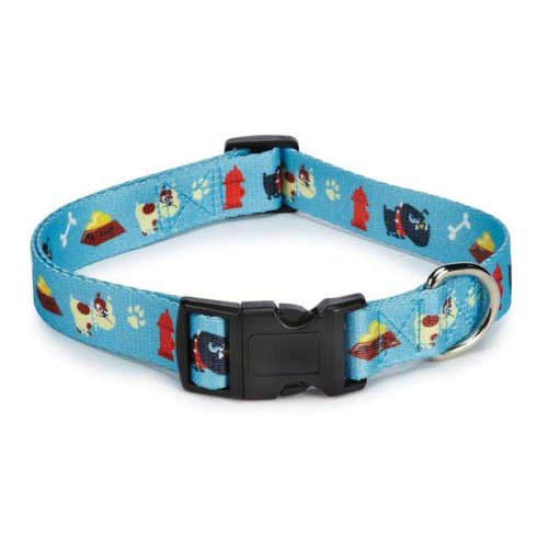 Casual Canine Toughdog Collar 18-26 In Blue