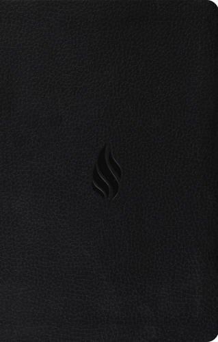 ESV Value Thinline Bible (TruTone, Midnight, Flame Design)