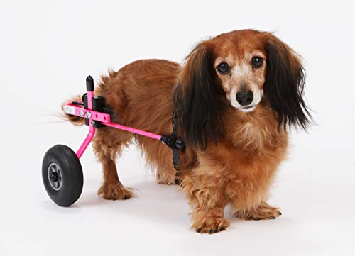K9 Carts | The Original Dog Wheelchair | Veterinarian Established | Custom Built in The USA (Extra Small (Rear Support Wheelchair), Pink)
