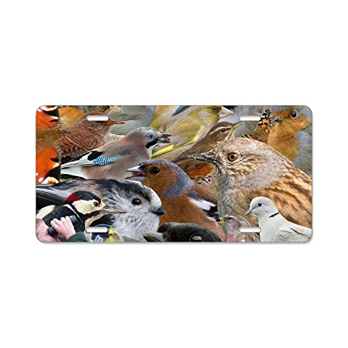 Khope Birds Watcher Metal License Plate Frame for Car, Metal Car License Plate Cover, Auto Tag Holder 6 × 12