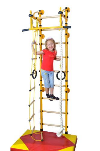 NiroSport FitTop M2 Kids Playground Play Set Indoor Home Exercise Sport Training Wall Bars with Pull Up Bar & Gymnastic Rings, Trapeze Swing Bar, Climbing Rope, Climbing Rope Ladder
