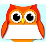 Carson Dellosa Colorful Owl Name Tags (150036)