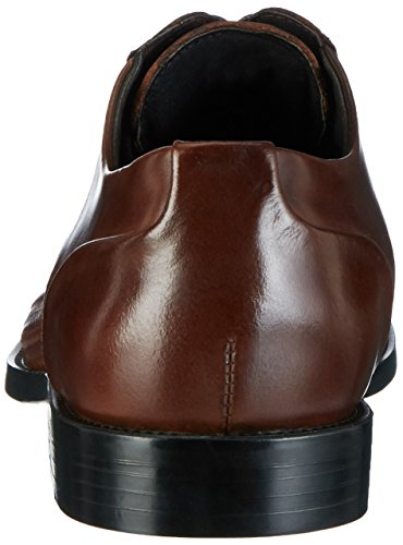 Kenneth Oxford Ticket Cole Hombre Brown para Marrón Cordones Balance 200 Zapatos de WgZFwqg7