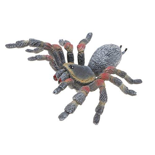 B Blesiya Figuras de Animales Realistas Juguete Realista Educativo Juego de Simulación Coleccción Adorno de Hogar - araña...