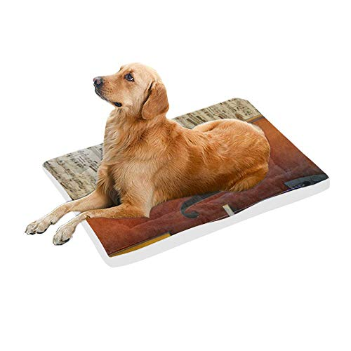 (InterestPrint Musical Curves Violin Against Music Notes Washable Pet Dog and Cat Bed Reusable Cotton Fleece Dog Bed Mat, 42x26 Inch)