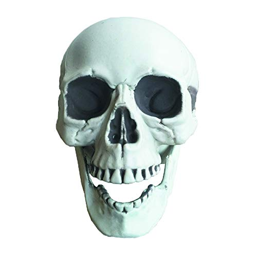 East Dream Halloween Skull Bones Life Size Realistic Skull Haunted House Escape Horror Props Decorations Holiday Props 6 Inch ()