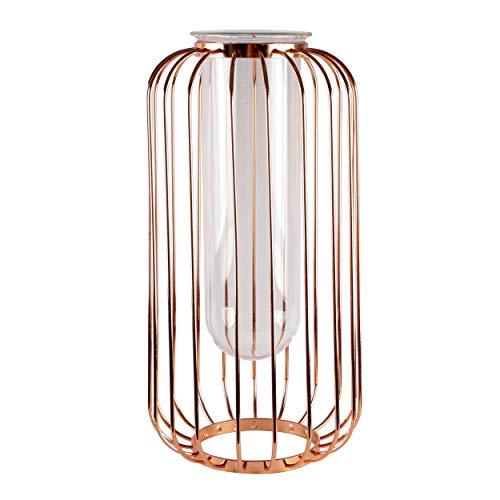 famibay Iron Cage Transparent Cylinder Glass Vase Minimalist Design Flower Vase Flower Arrangement Decoration Gift for Home Office Decor Large Rose Gold 12 Inch ()