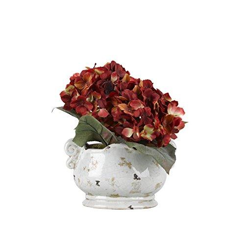 D & W Silks 175145 Red Hydrangeas in Oval Ceramic Planter, Red/Green/Off/White ()