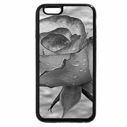 iPhone 6S Case, iPhone 6 Case (Black & White) - Divine rose