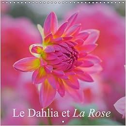 Le Dahlia Et La Rose 2017 Parce Que Les Fleurs Sont Nos