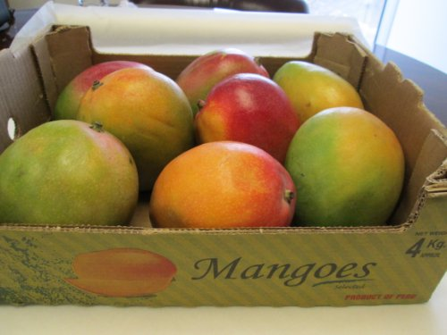 8 Selected Sweet and Juicy Fresh Large Mango Fruit - 9 Lb Pounds by hayden or kent (Image #2)