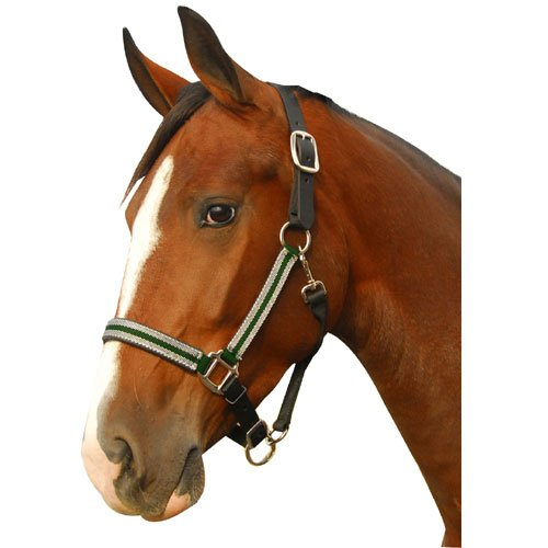 Leather Crown Safety Halter (Intrepid International Breakaway Leather Crown Padded Halter, Green/Silver, Full)
