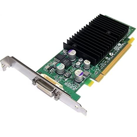 Nvidia Quadro NVS 280 64 MB DDR Tarjeta de Video PCI Express ...