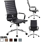 2xhome Ergonomic Office Chairs For Tall People Review and Comparison