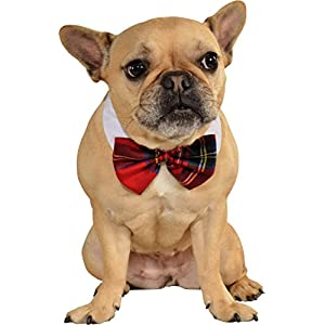 Rubies Costume Company Red Plaid Pet Christmas Bowtie, Medium/Large