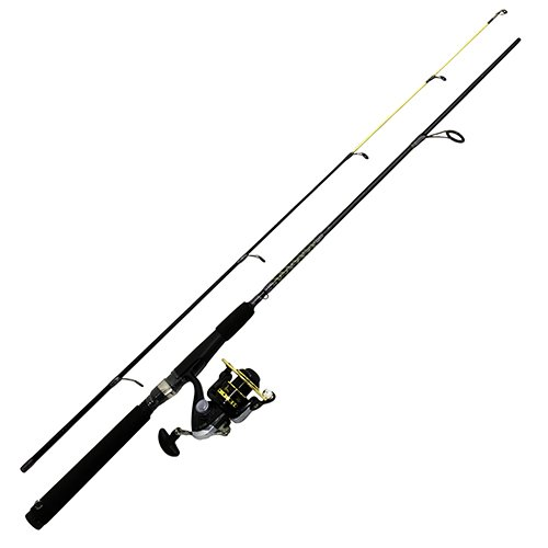 Eagle Claw Raptor Spinning Combo, 8-Feet/Medium Heavy