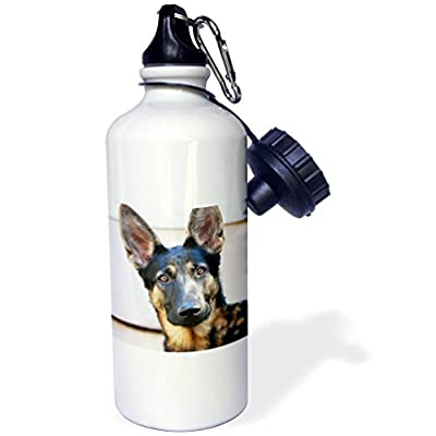 Statuear Smart Dog Race en aluminium 567gram Bouteille d'eau 600ml Cadeau