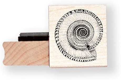 ammonite timbri in gomma/ /BR002H