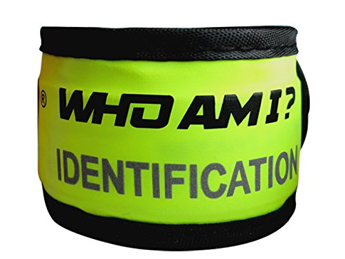 (Who Am I - Child ID Bracelet - YELLOW -Medical ID band- Light up- Glow-Blink-LED light- 9 1/2 inches- Slap it- EASY replaceable battery- Kids Ages 2-10)
