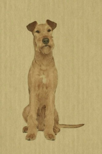 "Irish Terrier: Artified Pets Journal/Notebook/Diary, 6"" by 9"" and 160 Pages"