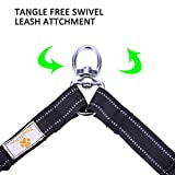 Snagle Paw Tangle Free BungeeX2 Double Dog Leash