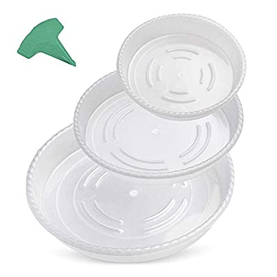 GROWNEER 18 Packs Thickened Clear Plant Saucer Drip Trays, with 15 Pcs Plant Labels, Plastic Plant Pot Saucers Set for Indoor Outdoor Garden, Assorted Sizes - 6/8.5/10 Inch, 6 Pcs of Each Size : Garden & Outdoor