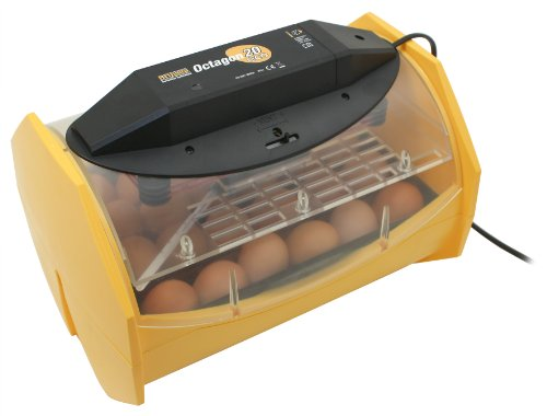 Brinsea Products Manual Egg Incubator for Hatching 24 Chicken Eggs or ()