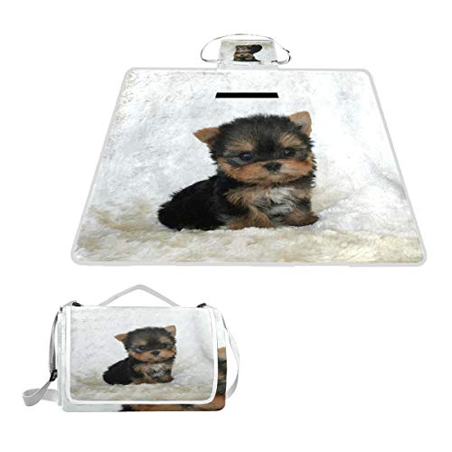 (HoDeColor Teacup Yorkshire Terrier Puppy Picnic Blanket Outdoor Tote Waterproof Backing Handy Camping Beach Hiking Mat)