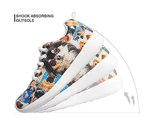 Mode Chaqlin Femme Pour Corgi Baskets Fqxq5Yz