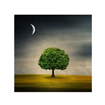 Under The Moon by Philippe Sainte-Laudy, 14 by 14-Inch Canvas Wall Art - Artist: Philippe Sainte-Laudy 14x14 Inch Canvas Art; Ready to Hang Lightweight, Canvas Gallery Wrapped Around Hidden Wooden Frame - wall-art, living-room-decor, living-room - 41UX%2BxblwkL. SS400  -