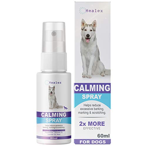 calming spray for dogs - 3