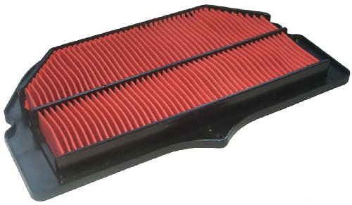 (Hiflofiltro HFA3908 Premium OE Replacement Air Filter)