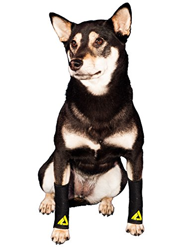 Pair of Dog Compression Sleeves (Pairs Of Things Costumes)