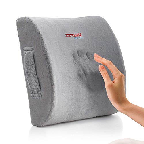 ZIRAKI Lumbar Pillow Memory Foam Cushion Support,...