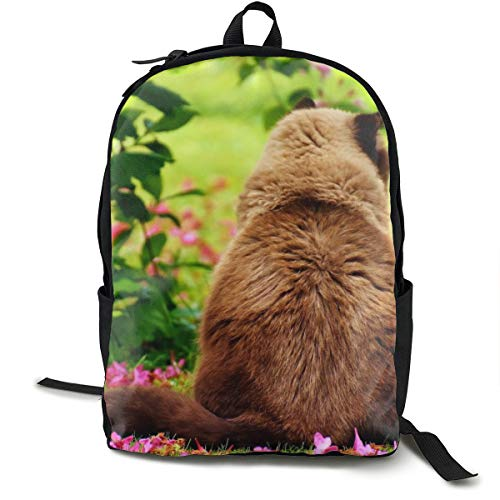 (British Shorthair Sitting Flowers Meadow Personalized School Backpack and Lunchbox Bag Set for Student and adult 16.5 X 12.5 X 5.5inch)