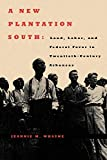 img - for A New Plantation South: Land, Labor, and Federal Favor in Twentieth-Century Arkansas (Carter G. Woodson Institute Series) book / textbook / text book
