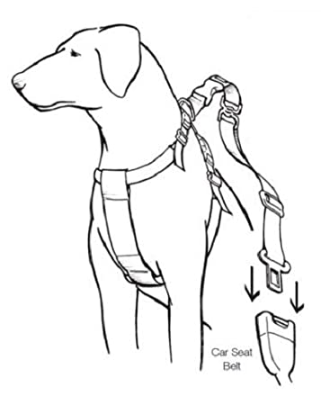 Mikki Travel Household Car Harness Keeps Dogs Safe Whilst