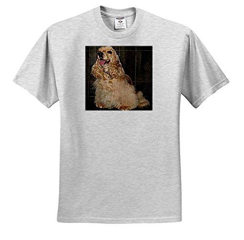 Dogs Cocker Spaniel - Cocker Spaniel - T-Shirts - Adult Birch-Gray-T-Shirt Large (ts_714_20) ()