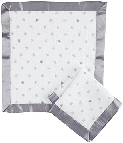 aden by aden + anais security blanket 2 pack, dove (Baby Silky Security Blanket)